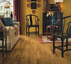 Linoleum Plank Flooring Beautiful And Charming Ideas Apple Wood Pattern Living Room