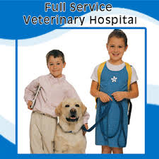 burke animal clinic veterinary burke va parkway veterinary clinic