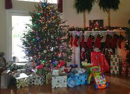 Christmas Tree Cataract Seen In by Carolina Charm December 2014