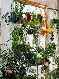 innenraumbegrünung in wien flowercompany
