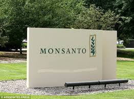 Agriculture Giant Monsanto Is The Developer Of Both Roundup Herbicide And Genetically Altered Crops Meant
