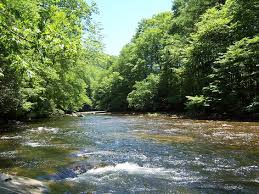 Sinks Of Gandy Camping by One Of My Favorite Wv Trout Streams Gandy Creek Not Only A Fine