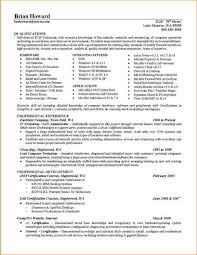 How To Write A Executive Summary Resume Writing Sample