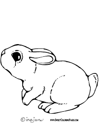 Cute Bunny Rabbit Coloring Page