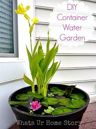 Aquascape Patio Pond Australia by Awesome Pond Pot Container Water Garden Next To A Couple
