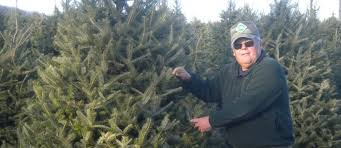 Plantable Christmas Trees Nj by Evergreen Valley Christmas Tree Farm Cut Your Own Christmas Tree