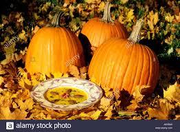 Halloween Harvest Luna Park In by Festival Of Halloween
