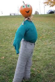 Real Pumpkin Patch Dfw by 198 Best Pumpkin Patch Images On Pinterest Halloween Pumpkins