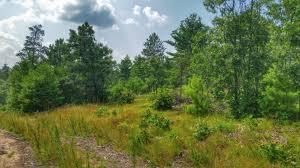 100 Wildcat Ridge State Natural Area Mapionet