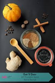 Nonfat Pumpkin Spice Latte Recipe by Back To Basics Diy Pumpkin Spice Blend Recipe Hello Creative Family