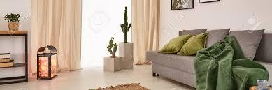 gemütliches wohnzimmer mit großem fenster und grauem sofa mit grüner decke und kissen