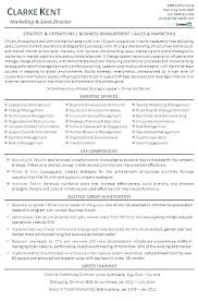 Director Resume Examples Example Executive Resumes Sample Marketing And Sales Of Best Mar