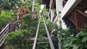 100 Hanging Gardens Of Bali Jungle Relaxation At The Of TRAVELLING THE