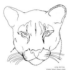 500x500 Panther Coloring Pages Index Black