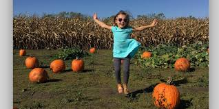 Best Pumpkin Patch Indianapolis by Need Help Choosing The Best Selfie Try This App