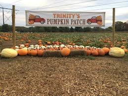 Pumpkin Picking In Freehold Nj by Happy Day Farm Home Facebook