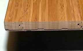 Strand Woven Bamboo Flooring Problems by Bamboo Flooring Choices