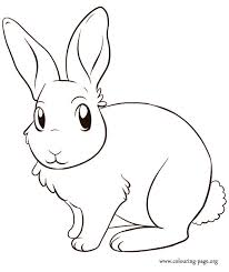 A Cute Bunny Coloring Page