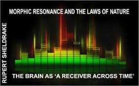 Morphic Resonance Is A Memory Principle In Nature Anything Similar Self Organizing System Will Be Influenced By That Has Happened The Past