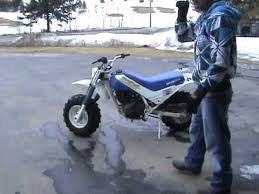 honda cat for honda cat fatcat 200 on the snow sold for 1200