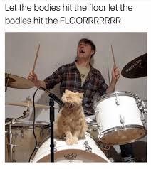 Parrot Caught Singing Bodies Hit The Floor 25 best memes about let the bodies hit the floor let the