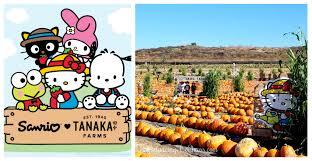 Tanaka Farms Pumpkin Patch by Hello Kitty Arrives At Tanaka Farms Tanakafarms Hellokitty