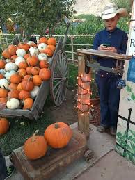 Hurricane Utah Pumpkin Patch by Western Legacy Farm And Ranch Posts Facebook