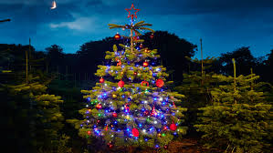 Christmas Tree Preservative Home Depot by Hang Outside Christmas Lights Christmas Lights Decoration