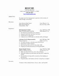 100 Truck Dispatcher Job Description Ing Resume Objective Inspirational