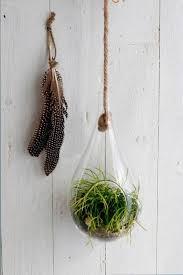 pflanzenglas tropfen zum hängen h 25cm ø12cm glasvase zum aufhängen pflanzen halterung pflanzen terrarium sukkulenten glas frühlingdeko