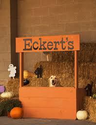 Eckerts Pumpkin Patch St Louis Mo by Private Bonfire Site Eckert U0027s Millstadt Fun Farm Tickets In