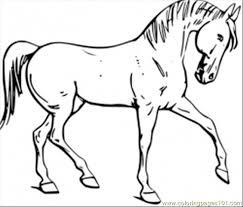 Unique Coloring Pages Of Horses Top Child Design Ideas