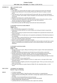 Download Category Sales Resume Sample As Image File