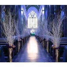 Winter Wedding Theme Silver And Ice Blue Romantic The Best Ideas