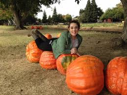 Wheatland California Pumpkin Patch by Petting Picture Of Bishop U0027s Pumpkin Farm Wheatland