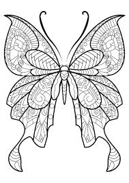 This Adult Coloring Book Beautiful Butterfly Pictures Color Easy Pages For Preschoolers Toddlers Life Cycle Page