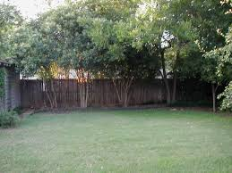 Garden Design: Garden Design With Tree Variety Backyard Your ... Best 25 Inexpensive Backyard Ideas On Pinterest Fire Pit Building Our Backyard Castle With Wood Naturally Emily Henderson Landscaping Ideas Designs Pictures Hgtv Hasbros Big Roger Williams Park Zoo Garden Design With For Small Makeover Great Backyards Of Grass Maintenance Gardens Diy Tiny House Can Host Music Recitals And Guests Curbed Traformations Projects The Green