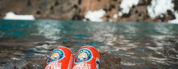 Denver Downs Pumpkin Patch Hours by Denver Beer Codenver Beer Co Denver Brewery U0026 Beer Garden