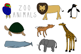 Free Preschool Coloring Pages Of Zoo Animals Primitivelifepw