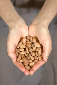 Sprouted Pumpkin Seeds Phytic Acid by Why Most Almond Butter Is Bad For You Eat Beautiful