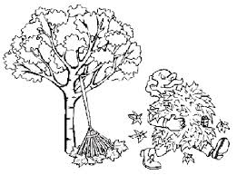 Autumn Leaves Collection Coloring Pages