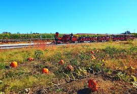 Pumpkin Patch Reno by Fall Fun At Historic Hawes Farms The Wandering Experience