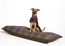 filson bed pet accessories by filson barbour rescue dogs by seattle humane