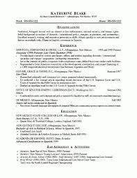 Great Resume Objective Statements Examples Resignation Letter Sample Objectives Free Example Format