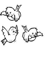 Three Cute Birds Coloring Pages