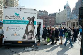 AC&C Unveils First Mobile Adoption Center - Animal Care Centers Of NYC 10 Awesome Places To Adopt A Dog Or Cat In Nyc Adopt Pet Hells Kitsch New York Today The Lunar Year Laundromat News Aspca Car Seat Cover For Dogs Walmartcom Home Aspcapro Worlds Most Recently Posted Photos Of Aspca And Nyc Flickr Spca Wchester County Mobile Animal Clinic Brooklyn City Bring Cat Free From The Aspcas Friday Adoption 25 Best Memes About Narcotics
