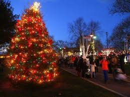 Christmas Tree Shop Middletown Ny by Where To Buy Real Christmas Trees In New Jersey