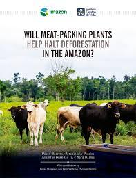 amazonia si e social will packing plants help halt deforestation in the amazon imazon