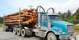 Logging Truck Insurance - Barbee Jackson