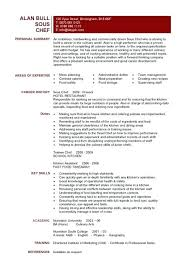 Professional Resume For Career Change Profile Chef Sample Examples Simple